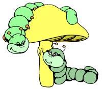 Cute Caterpillars