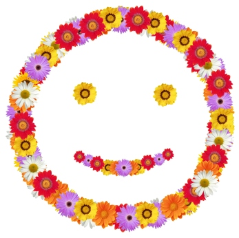 Spring Smiling Flowers Graphic
