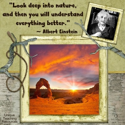 Einstein Quotes - Look deep into nature, and then you will understand everything better.