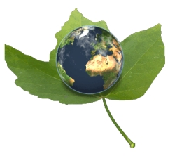 Recycling, Environmental, and Think Green Teaching Resources