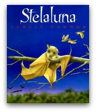 Stellaluna Book Cover and Creative Book Report Projects