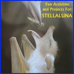 Stelluna Fun Activities and Ideas for Projects