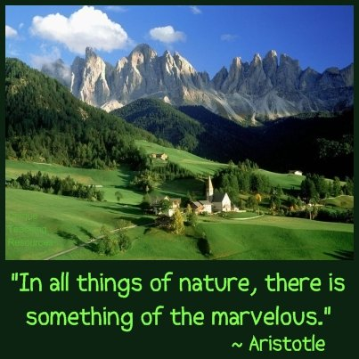 Aristotle Quote - In all things of nature there is something of the marvelous.