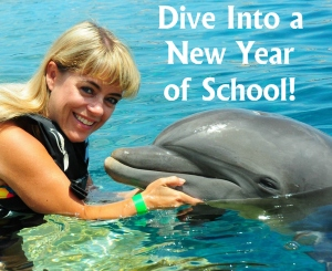 Heidi McDonald Unique Teaching Resources Teacher and Dolphin