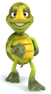 Tortoise Left