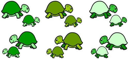 Esio Trot Turtle and Tortoise Bulletin Board Display Ideas and Examples