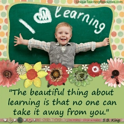 Quotes About Learning - The beautiful thing about learning is that no one can take it away from you. B.B. King