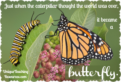 Quote About Nature - Just when the caterpillar thought the world was over,it became a butterfly.