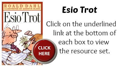 Esio Trot Book Cover Roald Dahl Projects