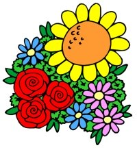 Spring Flowers Teaching Resources
