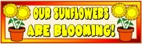 Spring Teaching Resources Sunflower Bulletin Board Display Banner