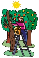 johnny appleseed quotes that he said quotesgram johnny appleseed clipart free johnny appleseed clipart black and white
