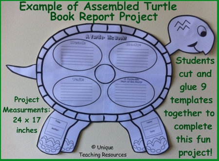 Example of Assembled Turtle Book Report Project Templates
