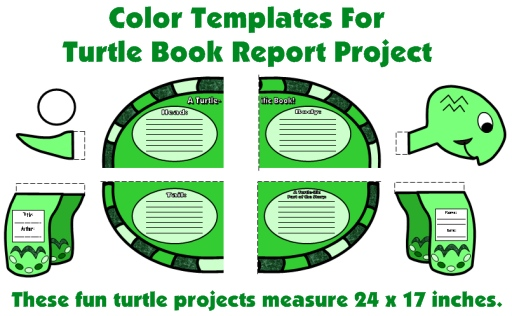 Color Templates For Turtle Book Report Projects