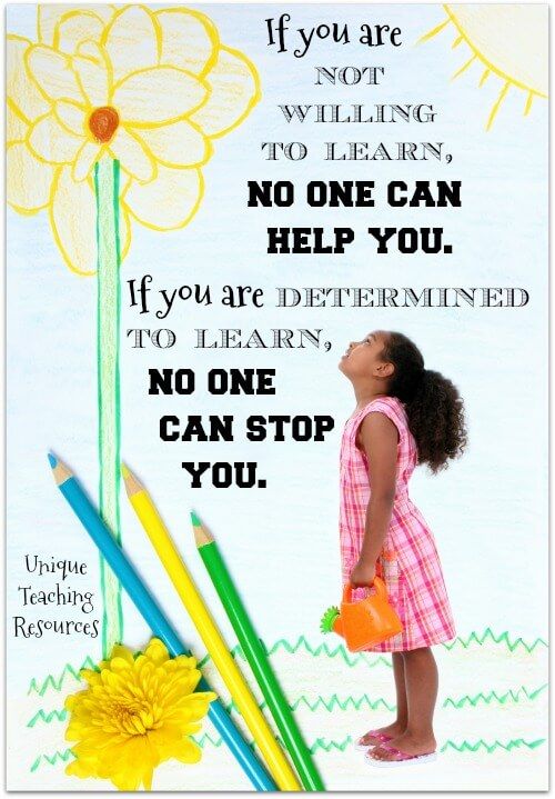 If you are not willing to learn, no one can help you. If you are determined to learn, no one can stop you.