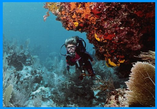 Heidi McDonald scuba diving in Cozumel, Mexico