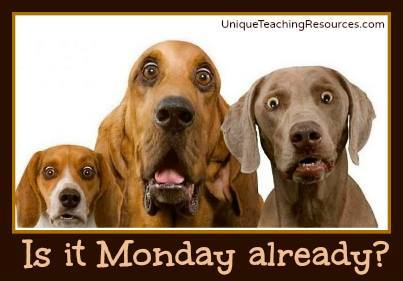 Is it Monday already?  Funny quote and graphic with dogs