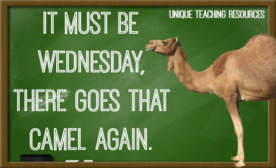 Hump Day Quote: It must be Wednesday, there goes that camel again.