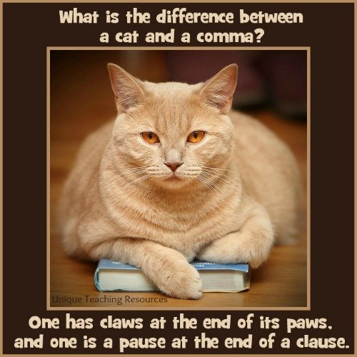 The difference between a cat and a comma.
