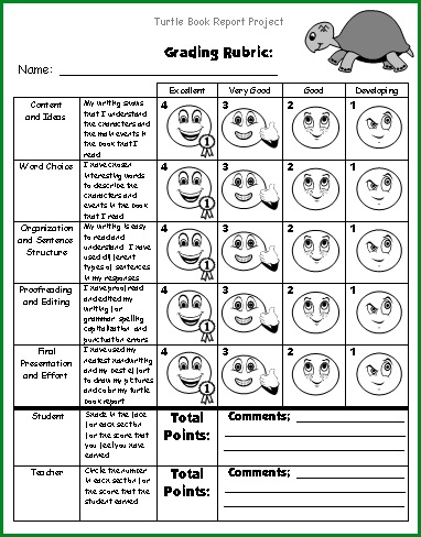 Turtle Book Report Project Grading Rubric For Students and Teachers