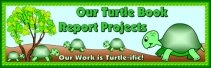 Turtle Book Report Project Bulletin Board Display Banner