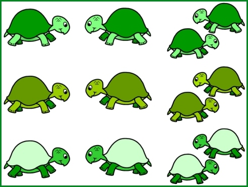 Turtle Bulletin Board Display Ideas and Examples - Free Turtle Templates
