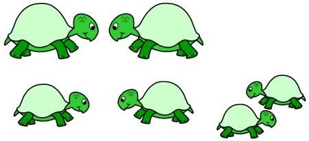 Turtle Bulletin Board Display Ideas