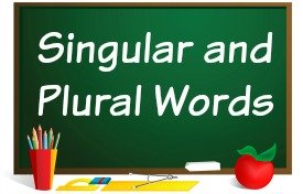 Changing singular words to plural words powerpoints lessons.